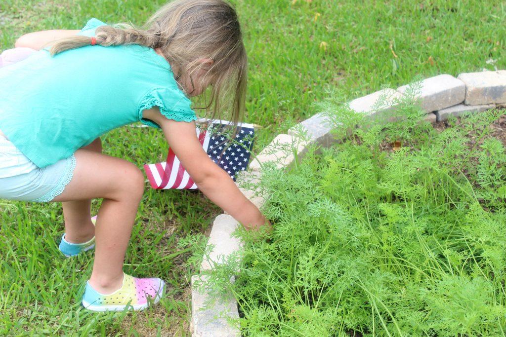 Book Review of Gracie's Garden | Lightfilledhome.com/blog