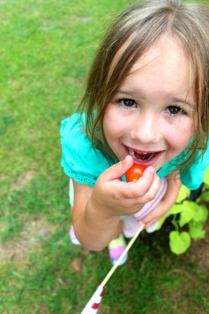 Book Review Gracie's Garden | Lightfilledhome.com/blog